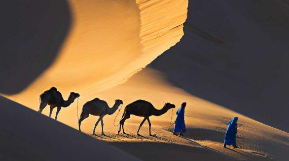 desert-nomads-112