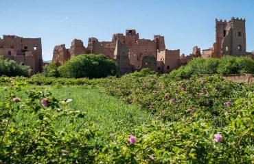 Morocco-tours-Rosevallei