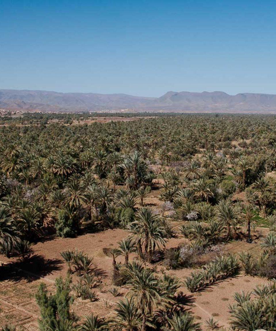 4-Days-roundtrip-to-Zagora-desert-02